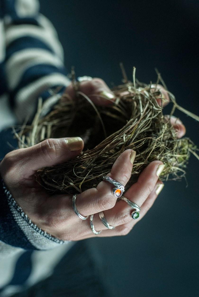 elha-foto gustavo coles-anillos nidos